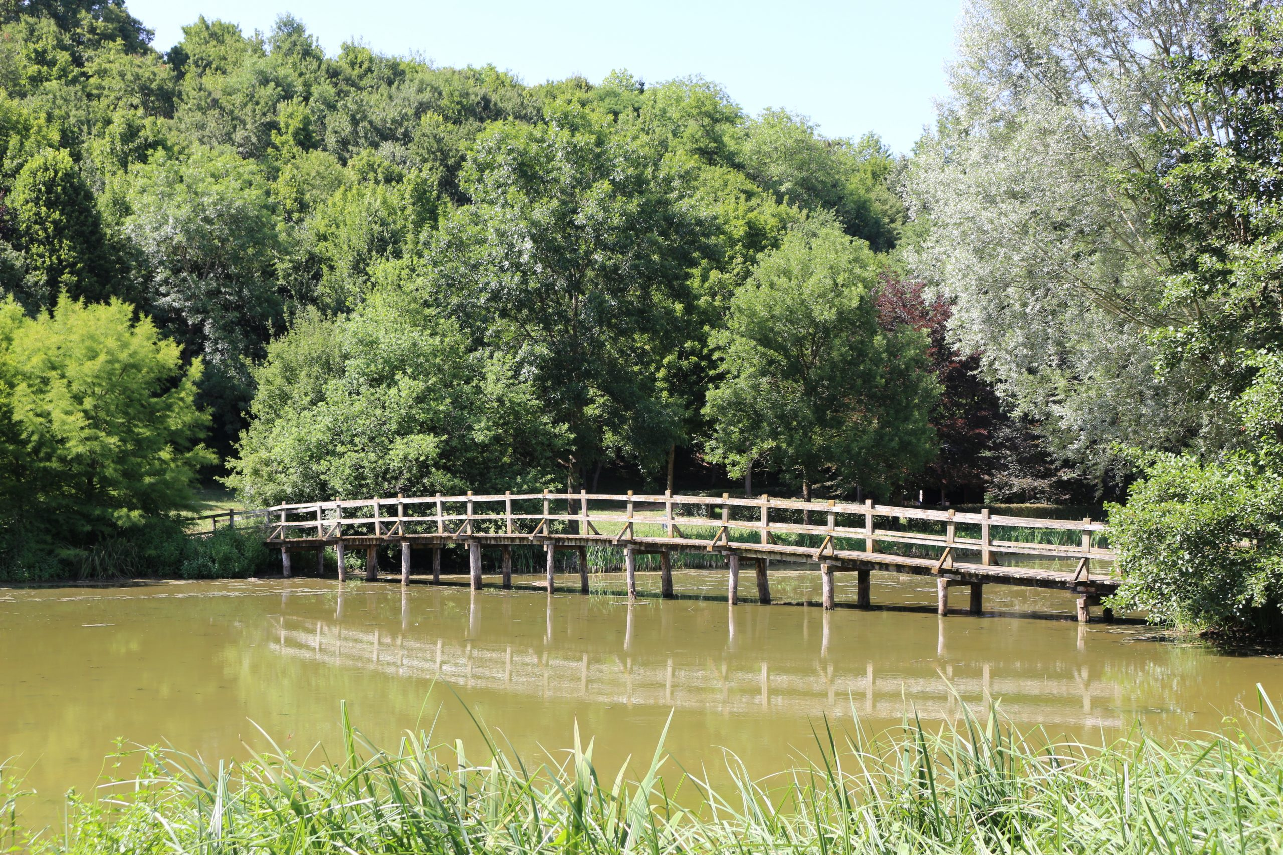 The bridge over the Source, Taize